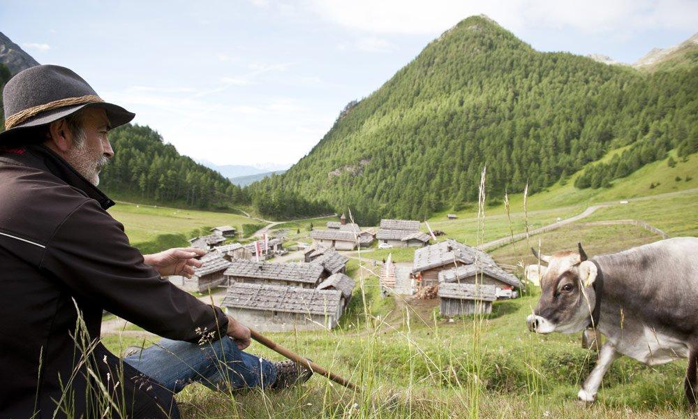 The Alpine Region Gitschberg Jochtal