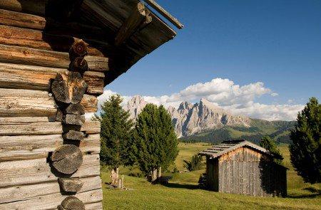 Die Rodenecker Alm: Das Höhenparadies in unserer Nachbarschaft