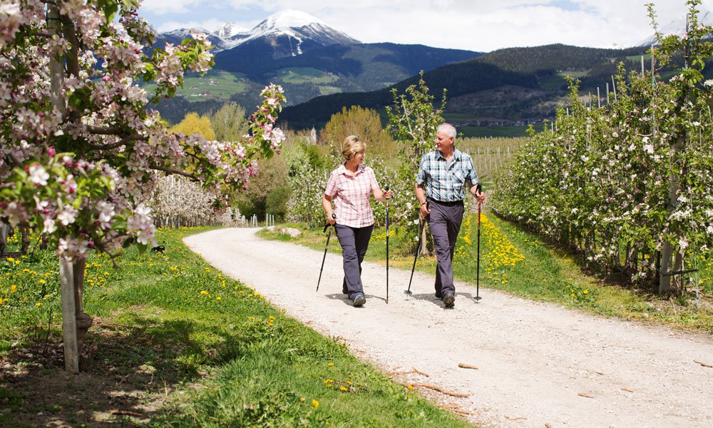 An abundance of beautiful nordic walking trails